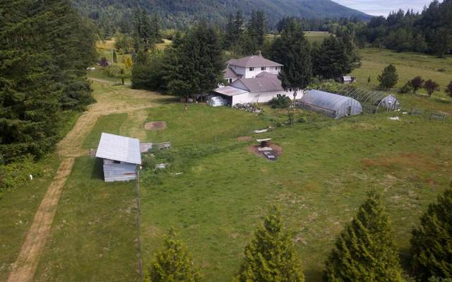 290 Colter Road, Columbia Valley, BC V2R 5B8 (#R2560617) :: Ben D'Ovidio Personal Real Estate Corporation | Sutton Centre Realty