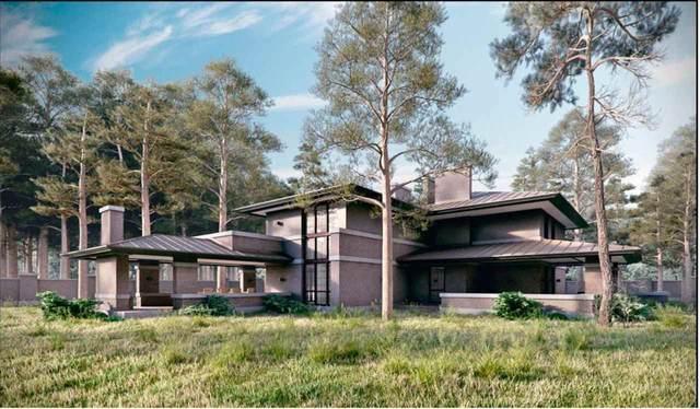 14705 56 Avenue Lot 9, Surrey, BC V3S 1B6 (#R2560772) :: Macdonald Realty
