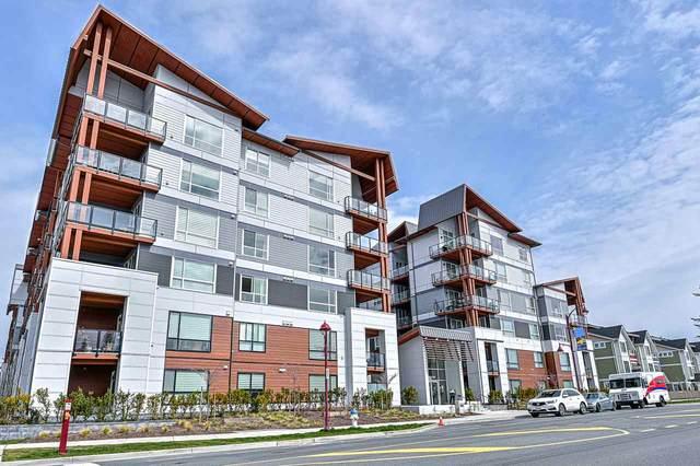 11501 84 Avenue #301, Delta, BC V4C 0E5 (#R2560839) :: Macdonald Realty