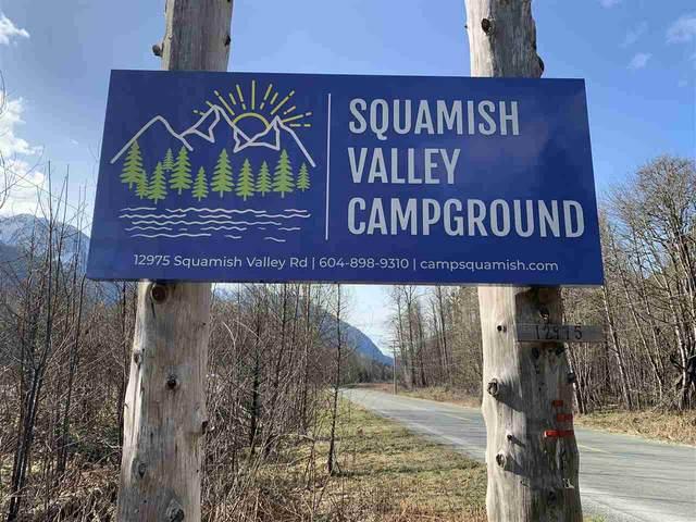 12975 Squamish Valley Road, Squamish, BC V0N 1H0 (#R2562576) :: 604 Realty Group
