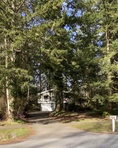 17659 20 Avenue, Surrey, BC V3Z 9V2 (#R2562889) :: Premiere Property Marketing Team