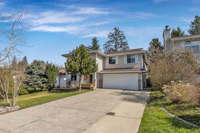 12200 234 Street, Maple Ridge, BC V2X 9K9 (#R2563038) :: Ben D'Ovidio Personal Real Estate Corporation   Sutton Centre Realty