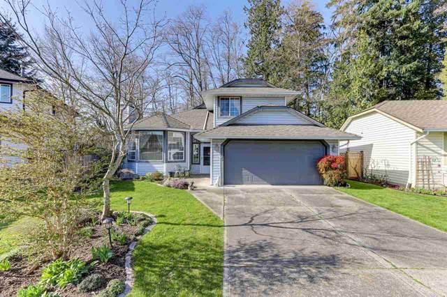 9345 211A Street, Langley, BC V1M 2B6 (#R2563430) :: 604 Realty Group