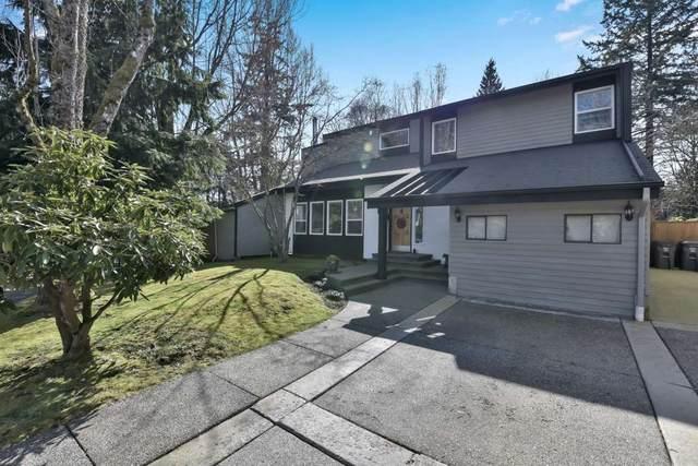8955 130B Street, Surrey, BC V3V 7B5 (#R2563806) :: Ben D'Ovidio Personal Real Estate Corporation | Sutton Centre Realty