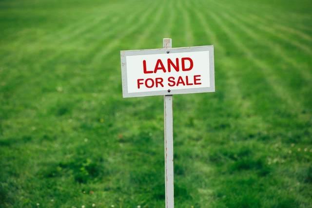 34109 Dlugosh Avenue, Mission, BC V2V 4L1 (#R2564364) :: 604 Realty Group
