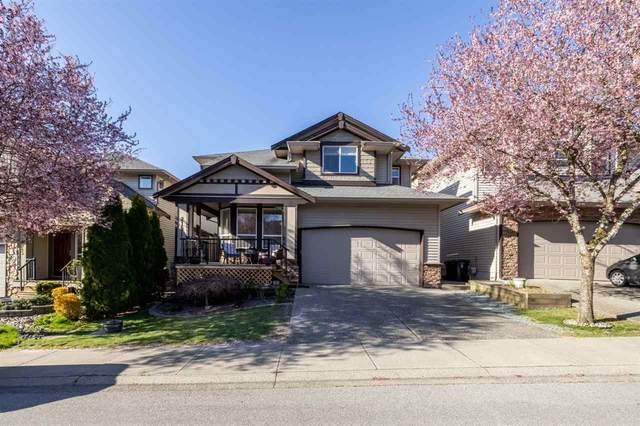 21671 89A Avenue, Langley, BC V1M 4C6 (#R2564897) :: Premiere Property Marketing Team