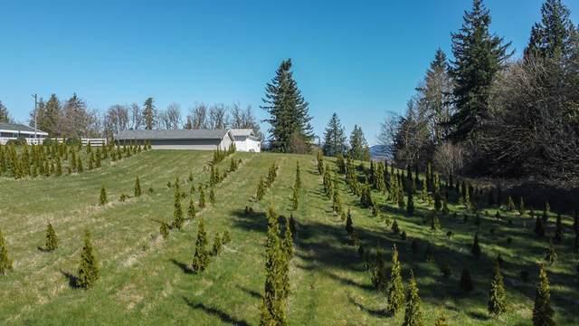 31945 Glenmore Road, Abbotsford, BC V4X 2M8 (#R2565768) :: Initia Real Estate