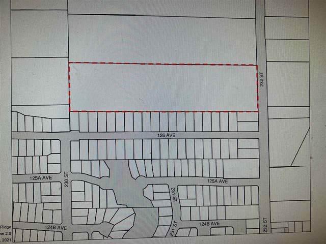 12639 232 Street, Maple Ridge, BC V2X 6T7 (#R2567468) :: Premiere Property Marketing Team