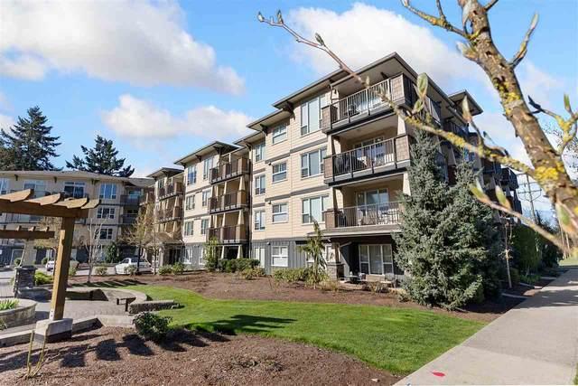 2565 Campbell Avenue #305, Abbotsford, BC V2S 0E3 (#R2567968) :: Homes Fraser Valley