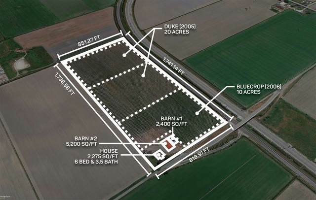 6900 36 Avenue, Ladner, BC V4K 3N2 (#R2568246) :: 604 Realty Group