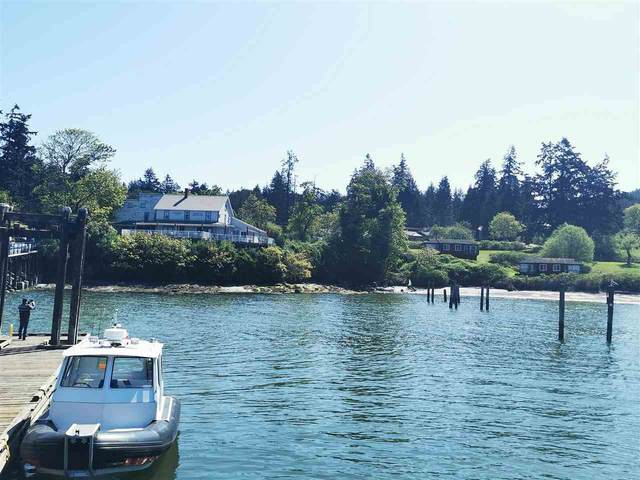 400 Fernhill Road, Mayne Island, BC V0N 2J0 (#R2573410) :: Ben D'Ovidio Personal Real Estate Corporation | Sutton Centre Realty