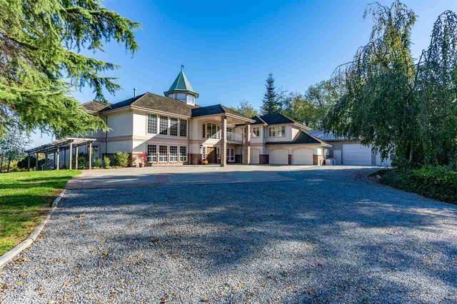 574 252 Street, Langley, BC V4W 2H5 (#R2575966) :: Premiere Property Marketing Team