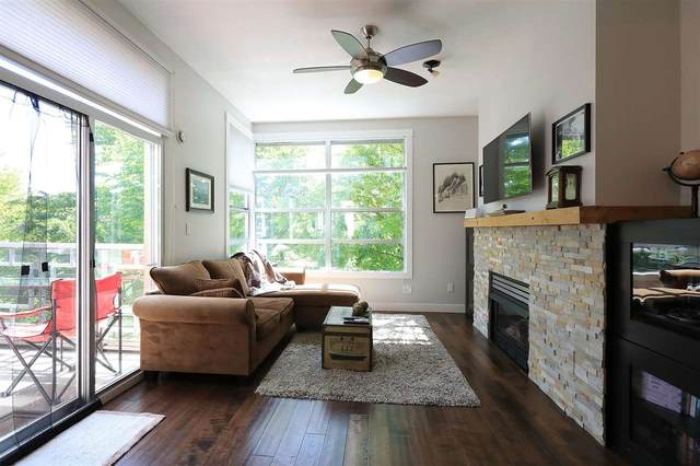 3083 W 4TH Avenue #407, Vancouver, BC V6K 1R5 (#R2576619) :: Initia Real Estate