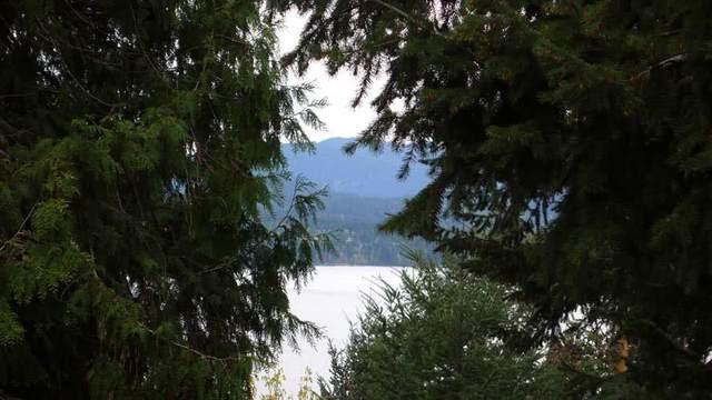 322 Collins Road, Salt Spring Island, BC V8K 2M9 (#R2577545) :: Premiere Property Marketing Team