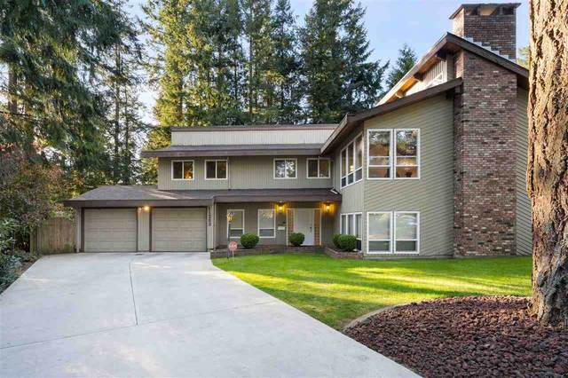 11253 Stewart Place, Delta, BC V4E 2J2 (#R2577546) :: Homes Fraser Valley