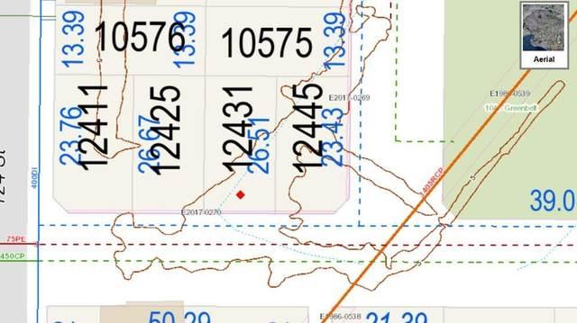 12431 105A Avenue, Surrey, BC V3W 3A8 (#R2578305) :: RE/MAX City Realty
