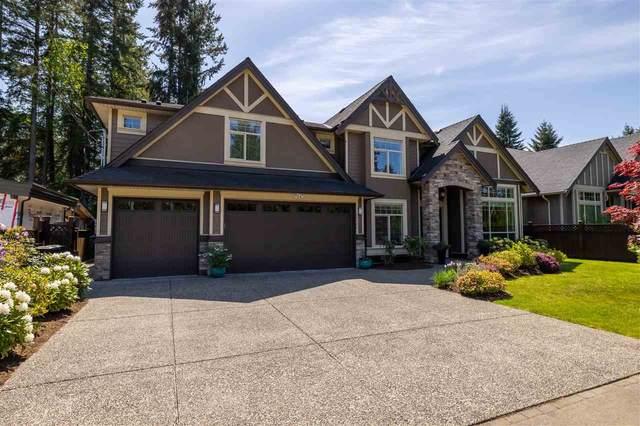 20702 40 Avenue, Langley, BC V3A 2X7 (#R2581096) :: Homes Fraser Valley
