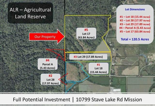 10799 Stave Lake Road Lot 17, Mission, BC V2V 4J1 (#R2583573) :: 604 Home Group