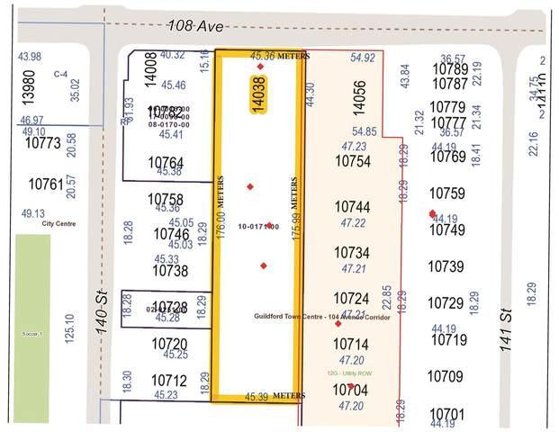 14038 108 Avenue, Surrey, BC V3T 5T4 (#R2584457) :: Premiere Property Marketing Team