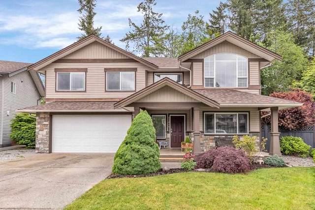 23811 115A Avenue, Maple Ridge, BC V2W 2B9 (#R2585824) :: 604 Home Group