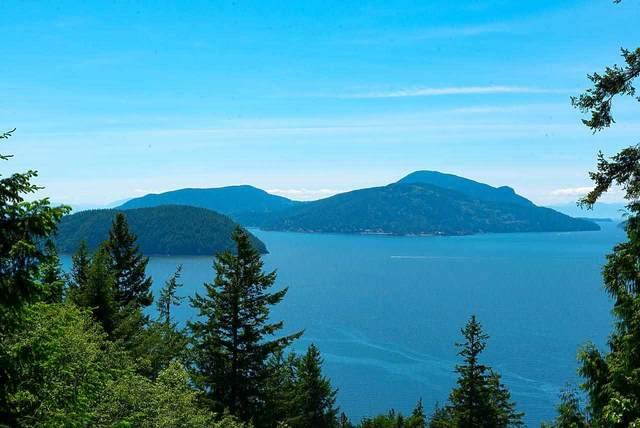 450 Mountain Drive, Lions Bay, BC V0N 2E0 (#R2586968) :: Initia Real Estate