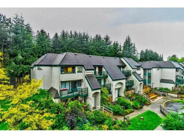 340 Ginger Drive #402, New Westminster, BC V3L 5L7 (#R2587401) :: Premiere Property Marketing Team