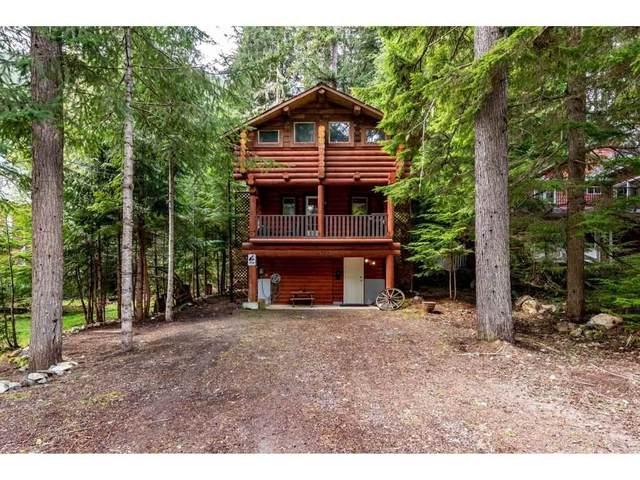 14903 Parkwood Street, Hope, BC V0X 1L5 (#R2588395) :: Initia Real Estate