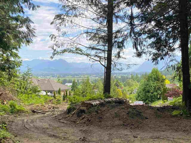 7365 Ridgeview Street, Chilliwack, BC V4Z 1J8 (#R2589003) :: 604 Realty Group
