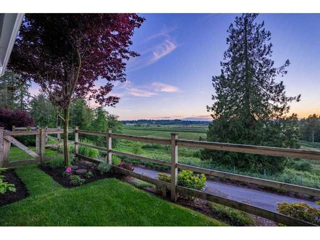 16380 64 Avenue #209, Surrey, BC V3S 6X6 (#R2589170) :: Homes Fraser Valley