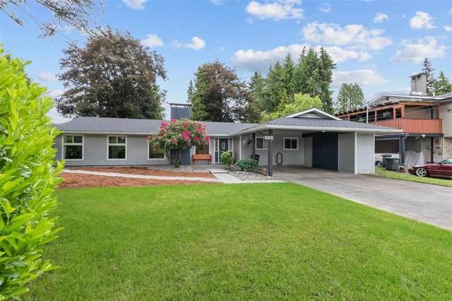 19561 117B Avenue, Pitt Meadows, BC V3Y 1G8 (#R2589981) :: 604 Home Group