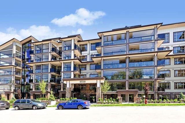 8558 202B Street #612, Langley, BC V2Y 3L4 (#R2591348) :: Premiere Property Marketing Team
