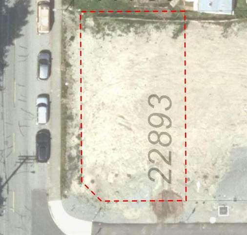 22893 117 Avenue, Maple Ridge, BC V0V 0V0 (#R2591547) :: 604 Home Group