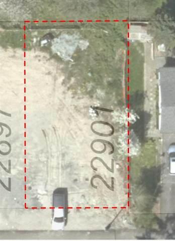 22901 117 Avenue, Maple Ridge, BC V0V 0V0 (#R2591556) :: 604 Home Group