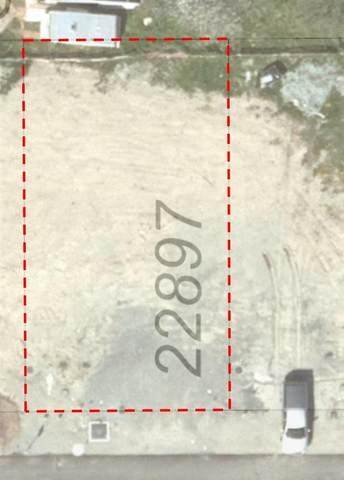 22897 117 Avenue, Maple Ridge, BC V0V 0V0 (#R2591568) :: 604 Home Group