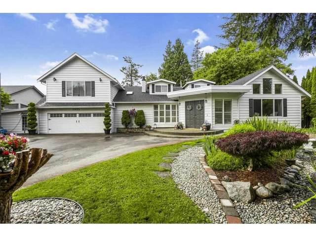 11495 212 Street, Maple Ridge, BC V2X 4Z4 (#R2591609) :: Ben D'Ovidio Personal Real Estate Corporation | Sutton Centre Realty