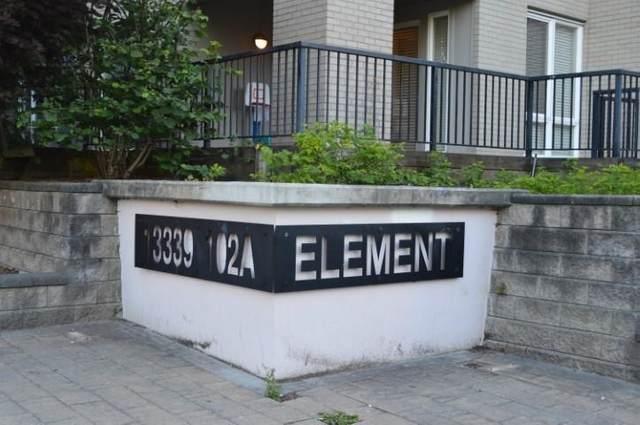 13339 102A Avenue #311, Surrey, BC V3T 0C5 (#R2591749) :: Premiere Property Marketing Team