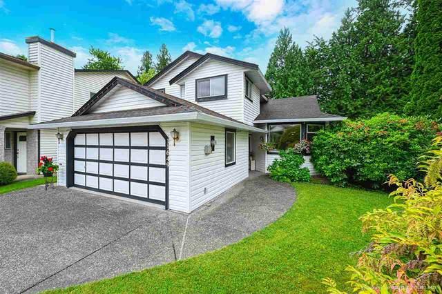 11649 202B Street, Maple Ridge, BC V2X 0E2 (#R2592383) :: Ben D'Ovidio Personal Real Estate Corporation | Sutton Centre Realty