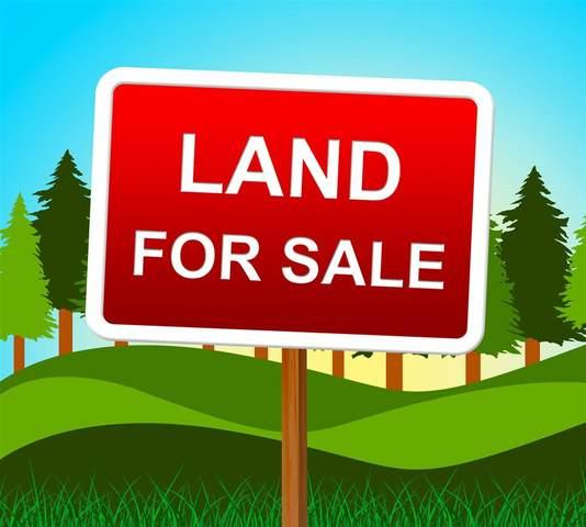 Lot 4 Williams Landing, Pitt Meadows, BC V0N 1V0 (#R2592453) :: 604 Home Group