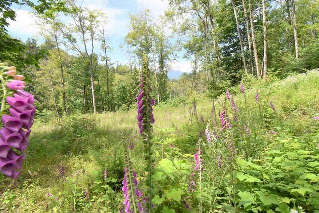48811 Elk View Road, Chilliwack, BC V4Z 1G7 (#R2592469) :: Initia Real Estate