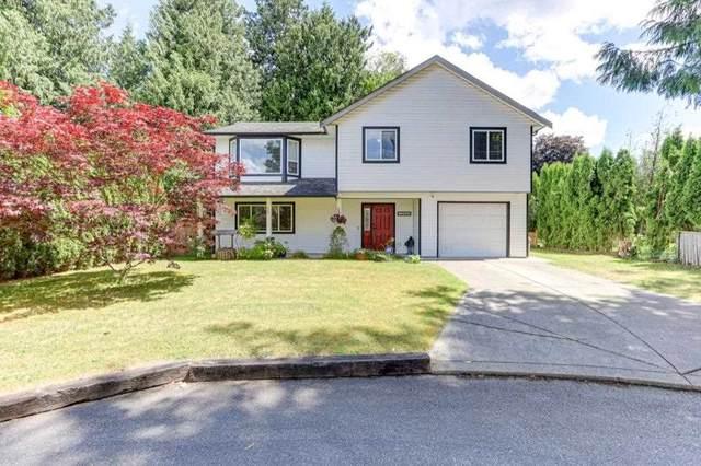 19750 50 Avenue, Langley, BC V3A 4J2 (#R2592479) :: RE/MAX City Realty