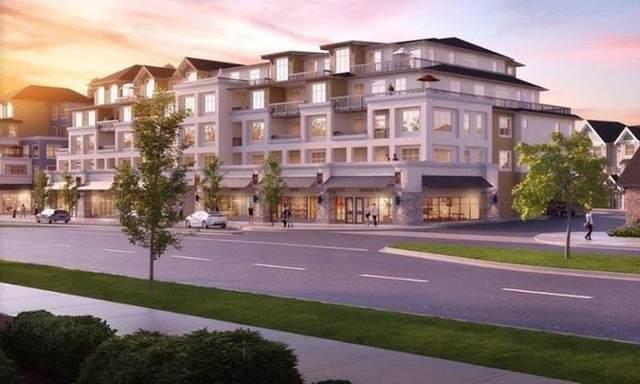 20487 65 Avenue B217, Langley, BC V2Y 3E3 (#R2592611) :: RE/MAX City Realty