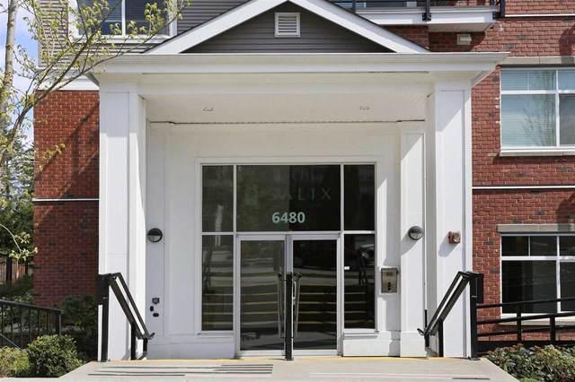 6480 195A Street #314, Surrey, BC V4N 6P1 (#R2593320) :: 604 Home Group