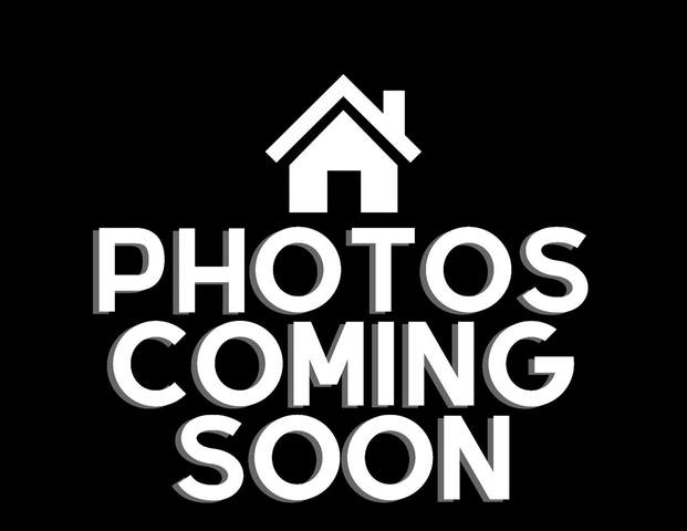 256 E 28TH Street, North Vancouver, BC V7N 1C2 (#R2593429) :: 604 Home Group