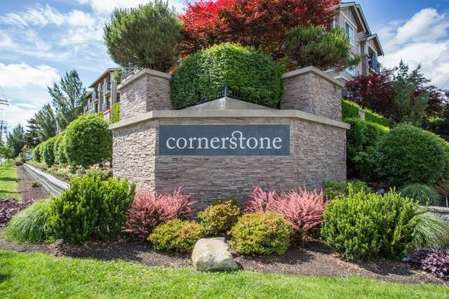 21009 56 Avenue #424, Langley, BC V3A 0C9 (#R2593469) :: 604 Home Group