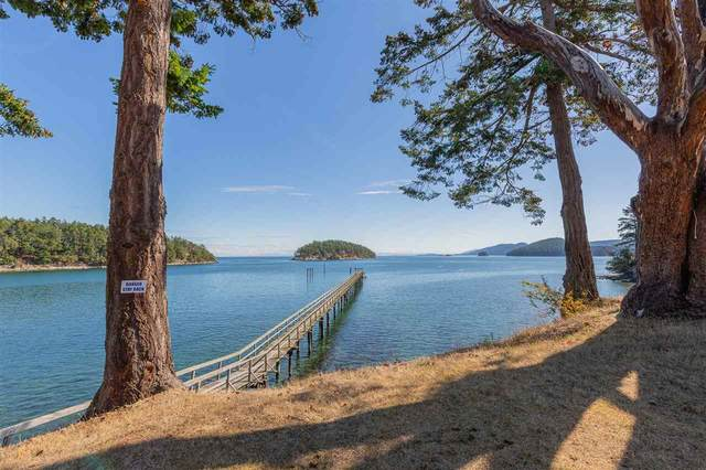 494 Arbutus Drive #107, Mayne Island, BC V0N 2J1 (#R2593671) :: Ben D'Ovidio Personal Real Estate Corporation | Sutton Centre Realty