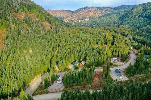 46950 Snowmist Drive, Mission, BC V0M 1A1 (#R2595617) :: 604 Realty Group