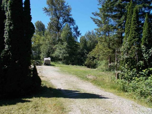 41348 North Nicomen Road, Mission, BC V0M 1G0 (#R2596350) :: Initia Real Estate