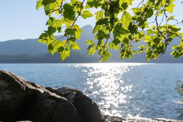 LOT 2 Cotton Bay, Gambier Island, BC V0N 1V0 (#R2597621) :: Premiere Property Marketing Team