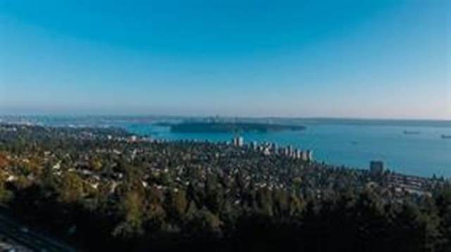 2465 Skilift Road, West Vancouver, BC V7S 2T5 (#R2597857) :: Ben D'Ovidio Personal Real Estate Corporation   Sutton Centre Realty