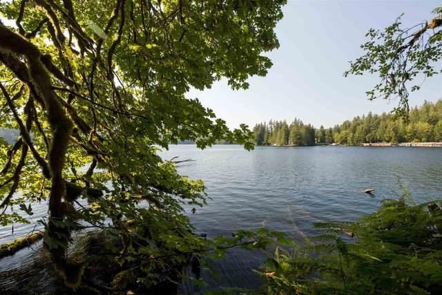6100 Sakinaw Lake Road, Pender Harbour, BC V0N 1V0 (#R2599816) :: RE/MAX City Realty